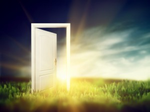 Open door on the green field. Conceptual